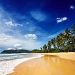 Tropical vacation holiday background - paradise idyllic beach. Sri Lanka